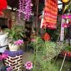 Cà phê ngủ trưa nghe nhạc thiền ở Đà Nẵng